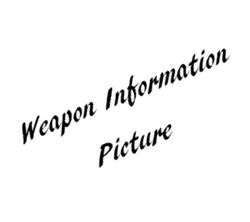 Weapon Information Picture