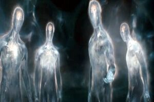 Transparent beings