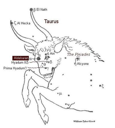 Taurus-William Tyler Olcott