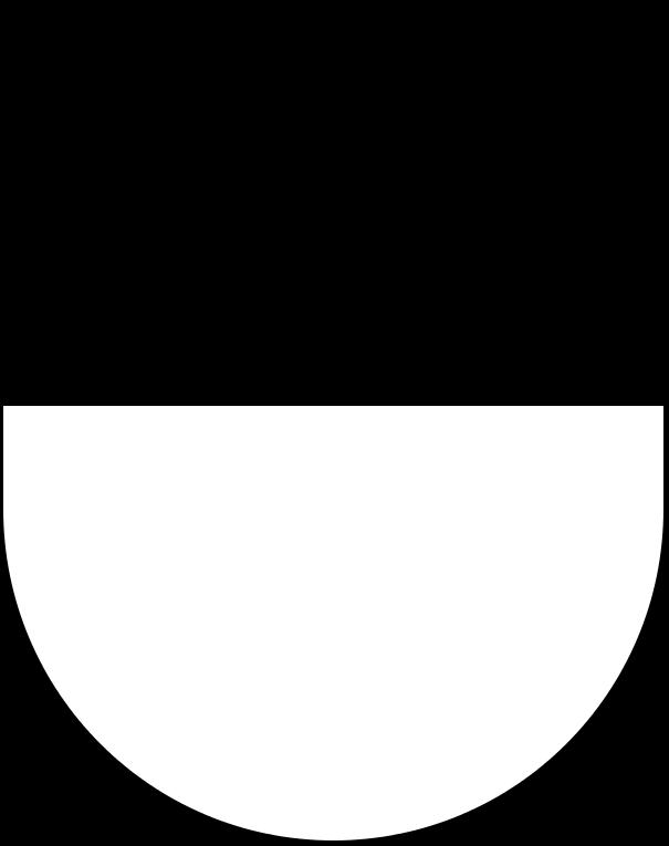 FRIflag