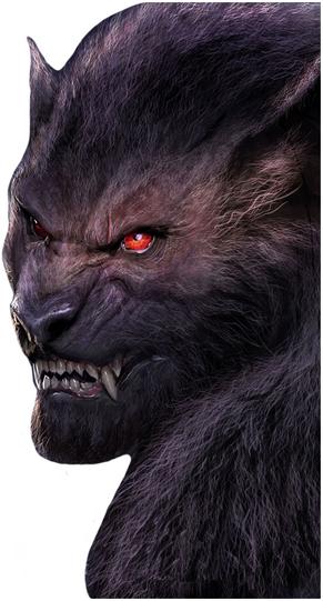 Fen Wolf