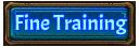 Fine Training