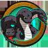 Triple-Headed Snake Tree