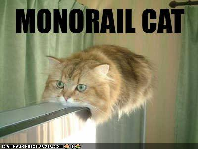 File:Funny-pictures-monorail-cat1.jpg