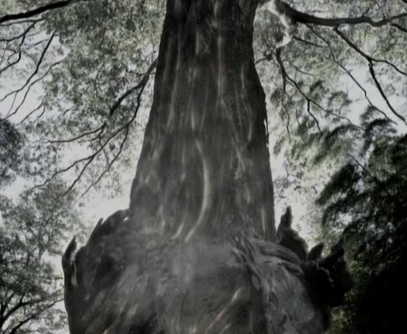 File:Niruwanie joins the tree.PNG