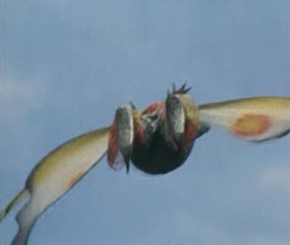 File:ButterFly King Flight.png