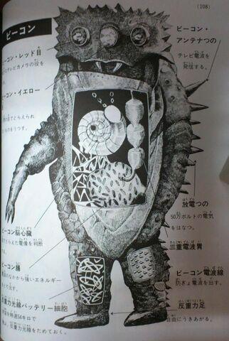 File:Beacon-anatomy.jpg