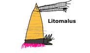 Litolumalusdraw