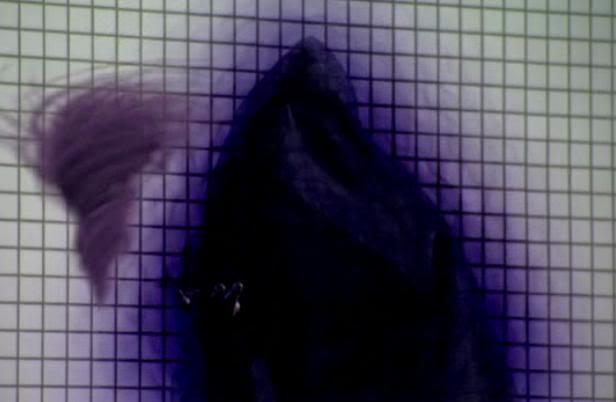 File:Dark Wizard.jpg
