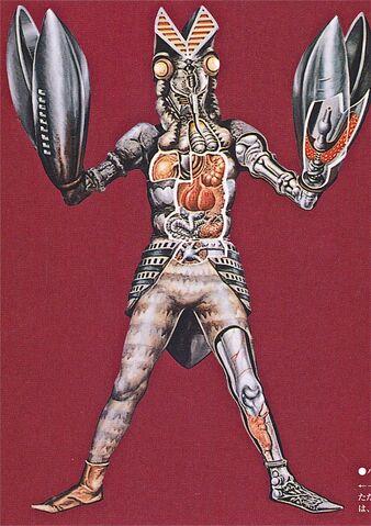 File:Baltan's Anatomy.jpg