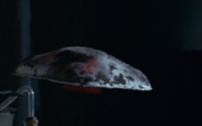 File:Small saucer flying-0.png