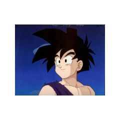 Hello..... Humans, I am Gohan, but you already knew that