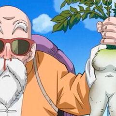 Number 1-Master Roshi