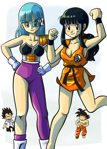 File:Bulma and Chichi by DBpictures.jpg