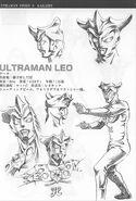 Story0 Leo Profile