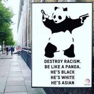 PandaRacism