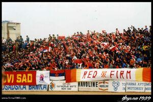 Фирма Нови Сад 1989