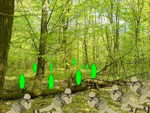 Second Pickle War