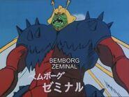 Bemborg 11