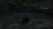 107 Egg Pink