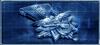 Item medal of valor blueprint