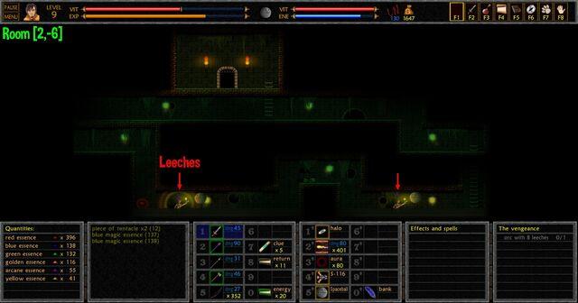 File:The Vengeance Leeches Room -2, -6-.jpg