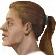 Head view artists reconstruction2
