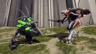 Halo 4 - AI Battle - Knight Battlewagons vs Hunters