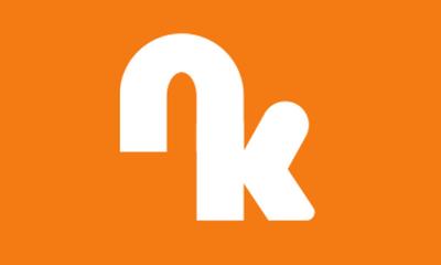 Nicktoon kingdom flag by nicktoonhero-d3b8fit