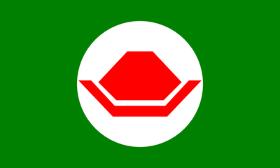 Flag of the Koopa Kingdom