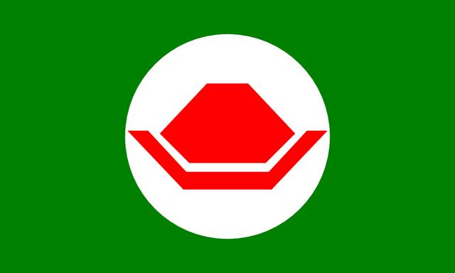 File:Flag of the Koopa Kingdom.png