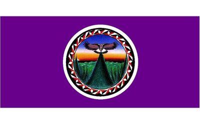 Flag United Nations Of Turtle Island-760x470