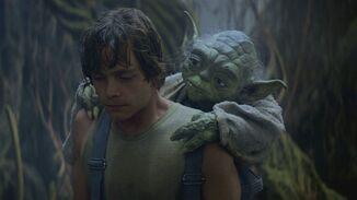 Yoda training Luke