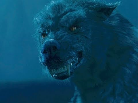 File:Season-of-the-witch-movie-clip-wolf-attack-official-hd1.jpg