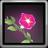 Slaishina's Flower