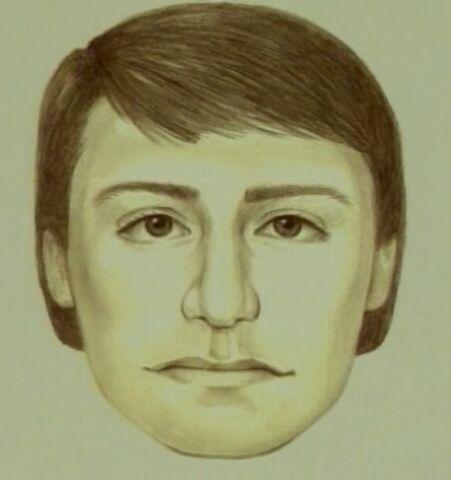 File:Carjacker assault1 suspect.jpg