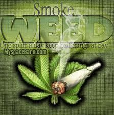 File:Weed1.jpg