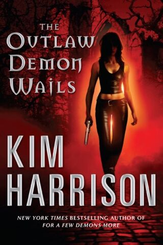 File:6. The Outlaw Demon Wails (2008) .jpg