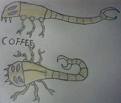 File:Coffeepic.png