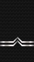 Sleeve black po 2