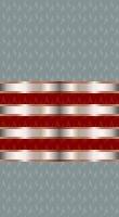 Sleeve cadet red 1