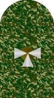 Sleeve cadet camo 2