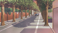 Debut-setting-sidewalk-sunset