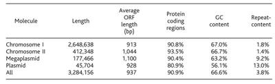 D.radiodurans genome chart
