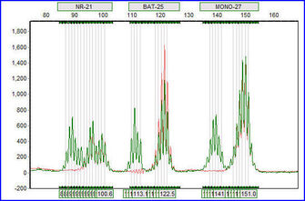 Microsatellite Instability in GeneMarker