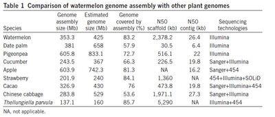Watermelon genome