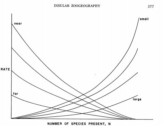 File:Island biogeography.PNG
