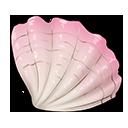 White-Wave Seashell