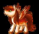 Autumn Blaze Pegasus