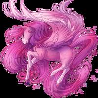 Roses Pegasus V2